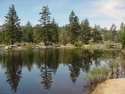 Arrowbear lake fishing in california for Lake gregory fishing report